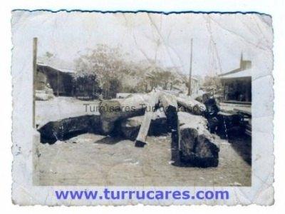 Tucas esperando ser trasladadas por el ferrocarril hacia el aserradero
